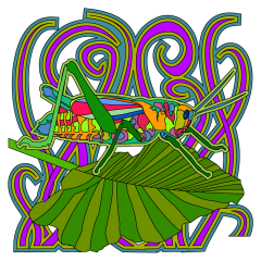 grasshopperInstagram